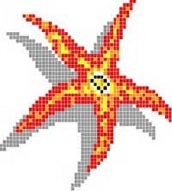 Mural SEA STAR, zglob 2mm