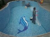 slika delfina u bazenu od mozaik plocica